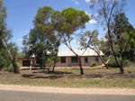 395 Hunt Road, Barmera, SA 5345