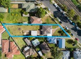 20 Pearce Road, Quakers Hill, NSW 2763