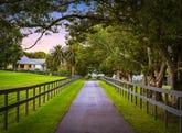 253 Yarramalong Road, Wyong Creek, NSW 2259