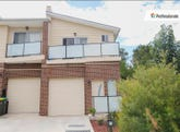 16 Sophie Street, Telopea, NSW 2117