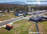 55 Hollyhock Drive, Kingston, Tas 7050