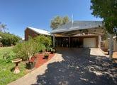 31 Hillside Gardens, Desert Springs, NT 0870