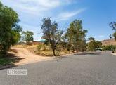 74 Hillside Gardens, Desert Springs, NT 0870