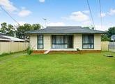 8 Van Diemen Avenue, Willmot, NSW 2770