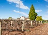 29 DeFontenay Road, Barmera, SA 5345