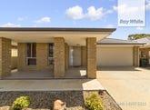 33 Scott Road, Smithfield Plains, SA 5114