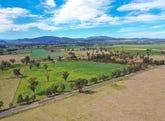 The Dartbrook Farms, 1291 Dartbrook Road, Aberdeen, NSW 2336