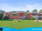 40 Foss Street, Blacktown, NSW 2148