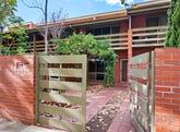 133 Stanley Street, North Adelaide, SA 5006