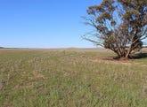 Section 10 Marama Road, Marama, SA 5307
