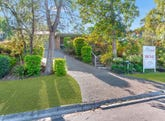 27 Colonsay Street, Middle Park, Qld 4074