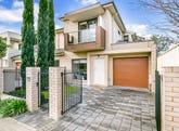 11A Mulcra Avenue, Park Holme, SA 5043