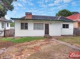 409 Wentworth Avenue, Toongabbie, NSW 2146