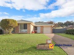 66 Daintree Drive, Albion Park, NSW 2527