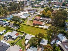 53 Kangaroo Street, Raymond Terrace, NSW 2324