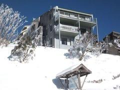 1 Alpine Haven, Mount Hotham, Vic 3741