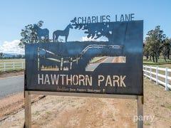 Hawthorn Park Charlies Lane, Carrick, Tas 7291