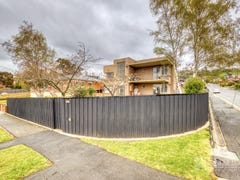 162 Abbott Street, Newstead, Tas 7250