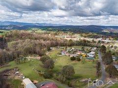 Lot 8 & 9 Mayday Road, Batlow, NSW 2730