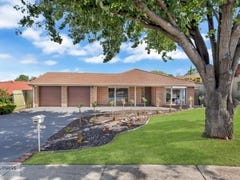 16 Stillwell Court, Greenwith, SA 5125