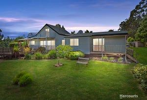 495 Golconda Road, Lilydale, Tas 7268