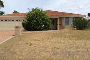 61 Viridian Dr, Banksia Grove, WA 6031
