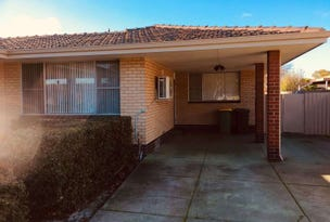 50 Chapman Road, Bentley, WA 6102