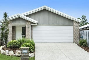 9 Riley Peter Place, Cleveland, Qld 4163