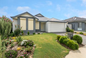 81 Teasel Way, Banksia Grove, WA 6031