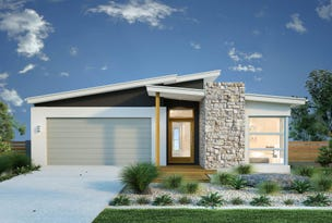 Lot 300 Lychee place, Palmview, Qld 4553
