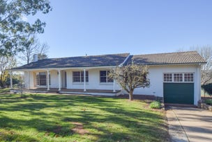 24A Back Creek Road, Young, NSW 2594