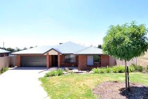 9 Chipp Place, Lloyd, NSW 2650