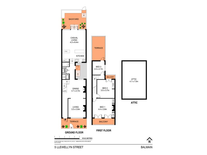 5 Llewellyn Street, Balmain, NSW 2041 - floorplan