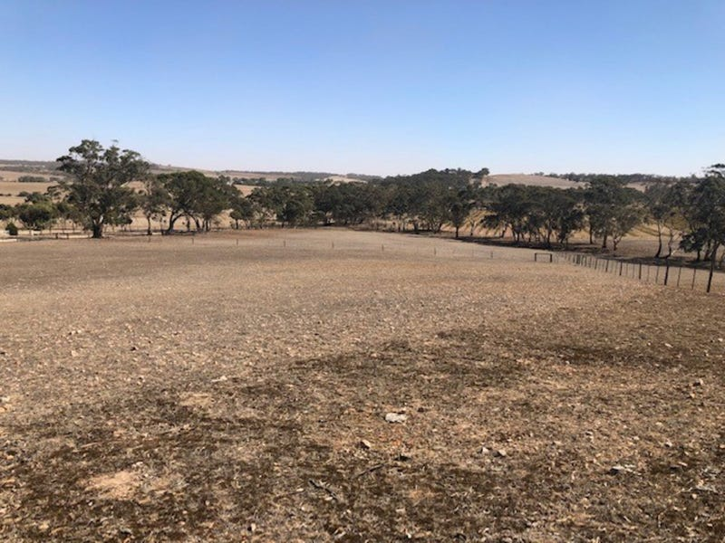 Lot 1, Burdon Road (Moppa), Nuriootpa, SA 5355