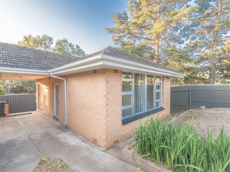 16b Victoria Drive, Modbury, SA 5092