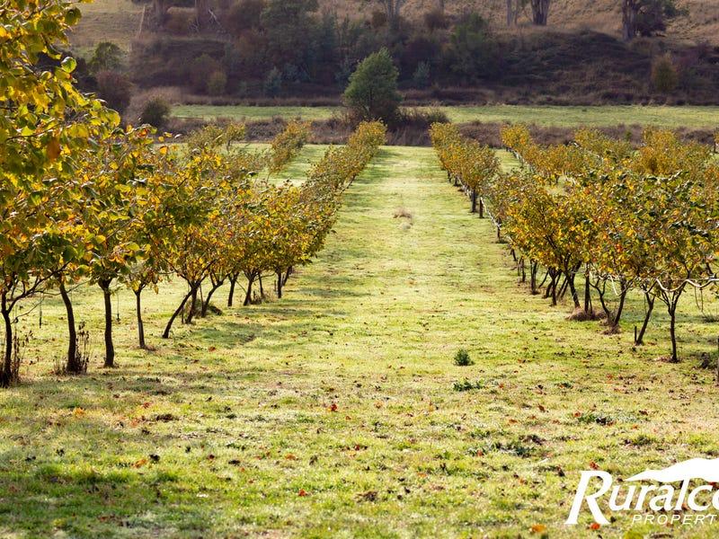 43 Turkey Farm Road, Glengarry, Tas 7275