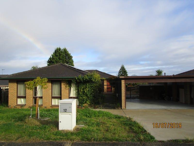 12 Hughes Close, Endeavour Hills, Vic 3802