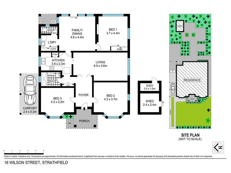16 Wilson Street, Strathfield, NSW 2135 - floorplan