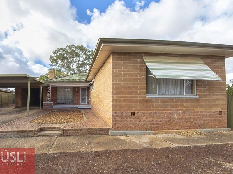 17 Hayles Road, Elizabeth Park, SA 5113