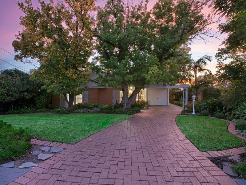 9 Braemar Road, Torrens Park, SA 5062