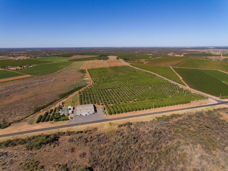 259 & 113 River Road, Coomealla, NSW 2717