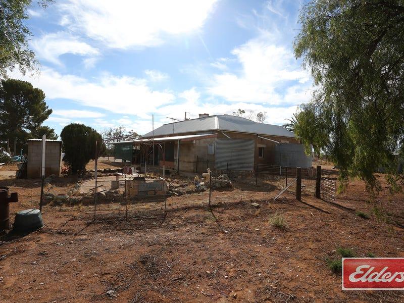 94 Robertson Road, Towitta, SA 5353