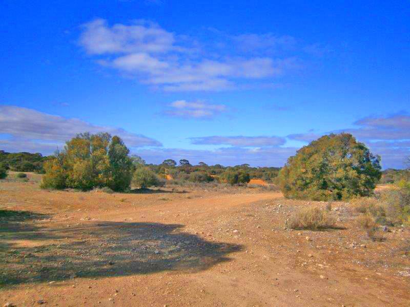 91, Sturt Highway, Blanchetown, SA 5357
