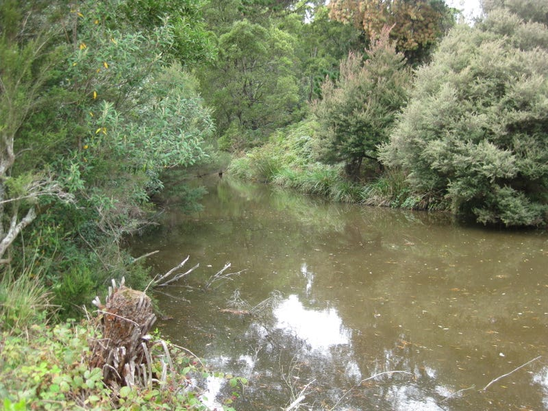 Lot 2 Trowutta Road, Edith Creek, Tas 7330