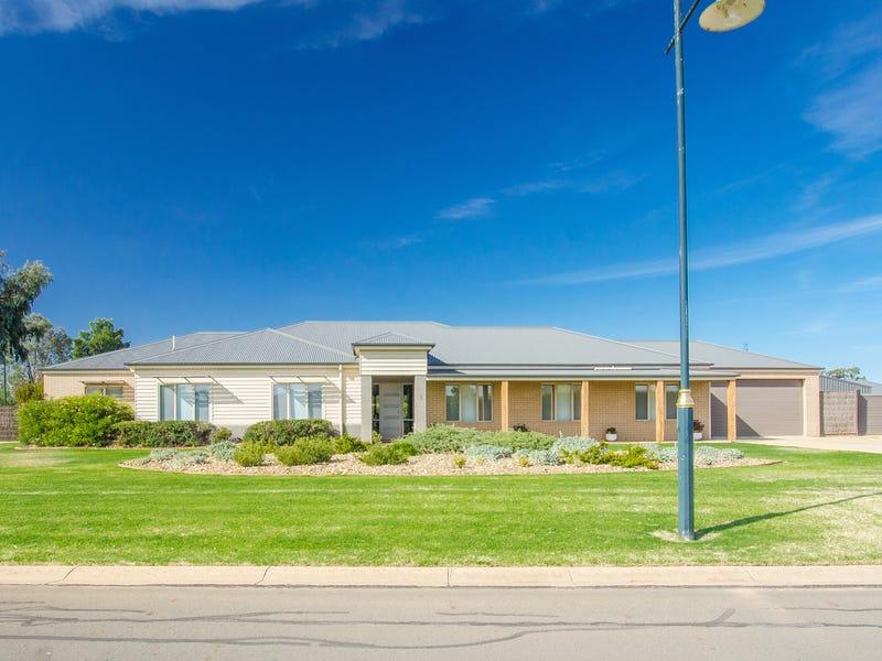 1 Grenache Grove, Moama, NSW 2731
