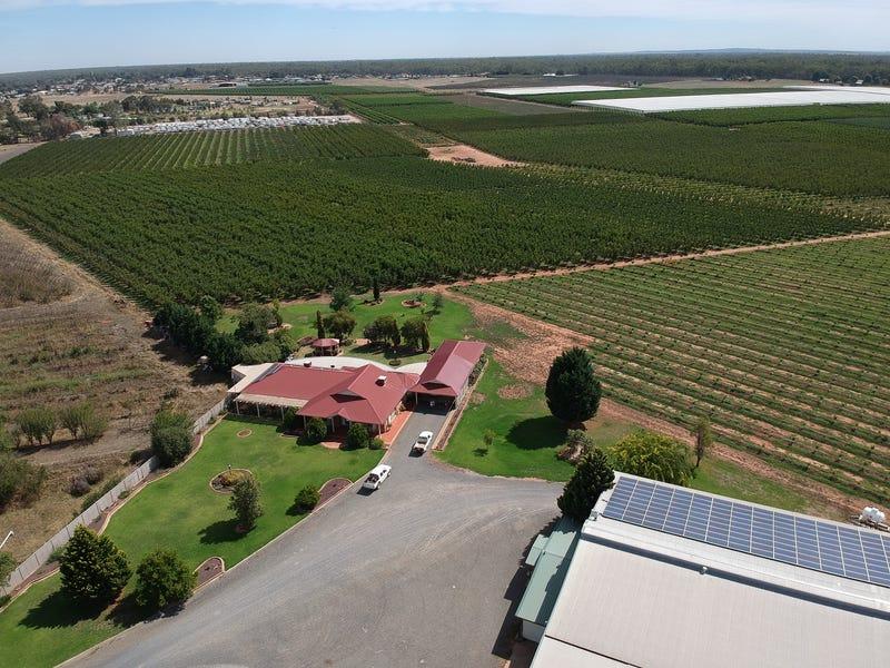 Murray River Produce -  3384 Murray Valley Highway, Cobram, Vic 3644