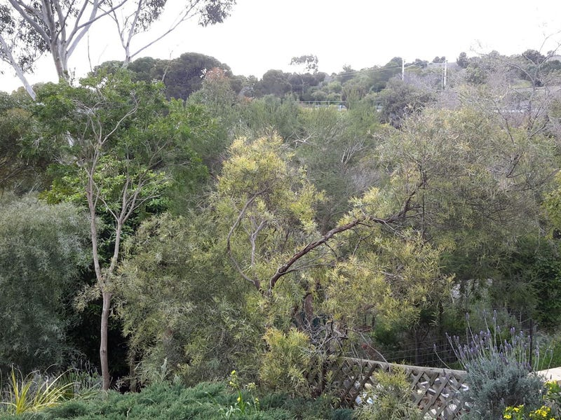 Hallett Cove, address available on request