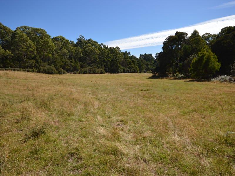97 Newhaven Road, Montumana, Tas 7321