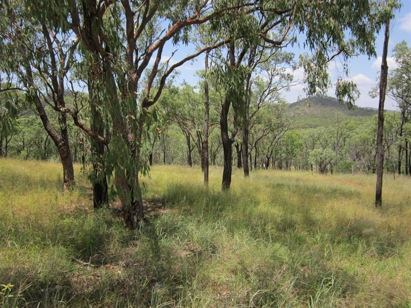 37 B Nine Mile Road, Nine Mile Creek, Qld 4714