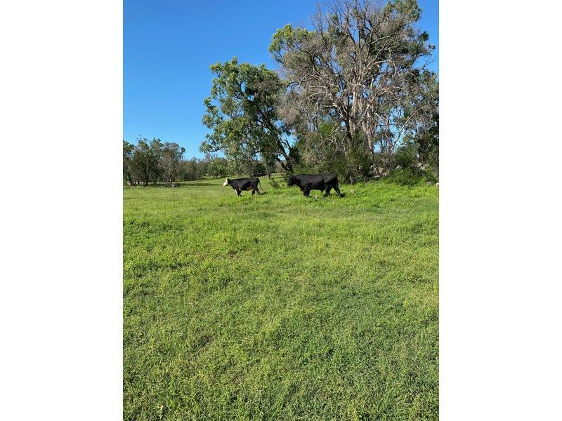 886 Wearnes Road, Bundarra, NSW 2359